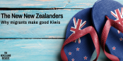 the-new-nzers-twitter